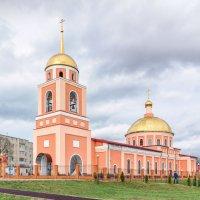 Кафедральный собор в честь святого благоверного князя Александра Невского :: Анатолий Сидоренков