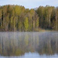 Весенние зеркала...... :: Юрий Цыплятников
