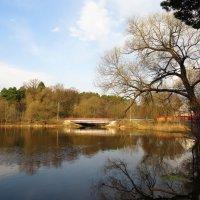 Утро на озере :: Андрей Снегерёв