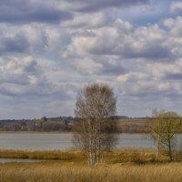 Апрельский пейзаж :: Сергей Цветков