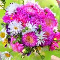 Живые цветы :: юрий Амосов
