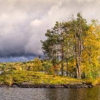 Осень.4 :: Антон Смульский