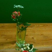 Джусай и роза :: Владимир Беспалько