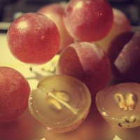 Виноградик :: Виктория