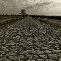 Старая дорога :: Andrey Кожевников