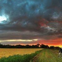 я бачила вогонь у неба на вустах :: Анна Чернобай