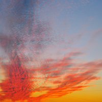 Багряный лист нарисовал на небе ветер... :: Надежда Лаптева