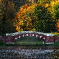 Мостик в парке :: Светлана Шестова