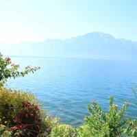 Lac Léman (Серия) :: Veronika Chernyshova