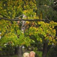 Поцелуй осени :: Катерина Горелова