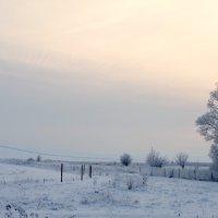 пейзаж :: Анастасия Позднякова