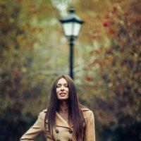 Осень :: михаил шестаков