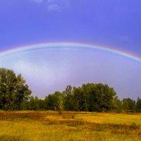 Радужный дождик :: юрий Амосов