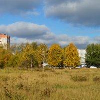 Осень в городе :: Елена Перевозникова