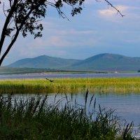 Озеро Большое. :: Наталья Юрова
