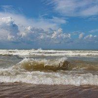 Черноморская волна. :: Наталья Юрова