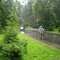 Дождь.. :: aksakal88