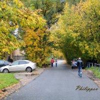 Осенняя промозглость... :: Виктор Филиппов