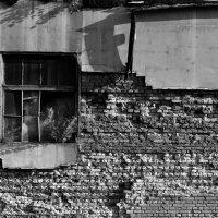 Жизнь на руинах :: Kate Bahdanovich