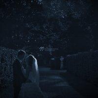 Свадебная ночь :: Ирина Ивлева
