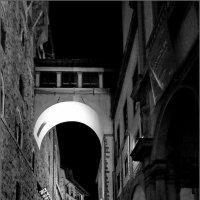 Под покровом ночи :: Наталья Rosenwasser