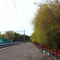 Станция :: Мария Лебедева