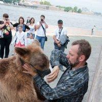Медведь на улицах города. :: Katerina Bondar