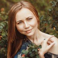 Солнечная осень :: Ольга Колбакова