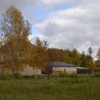 Осень :: Виктор Шкуратов