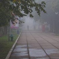 Осеннее утро :: владимир