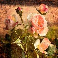 Старая открытка :: Надежда Лаптева
