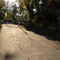 Старый парк. :: Mary Pond