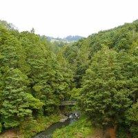Вид с водопада :: Natalya секрет