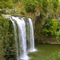 Whangarei falls :: Natalya секрет