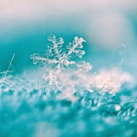 Одна снежинка еще не снег... :: Ирина Ивлева