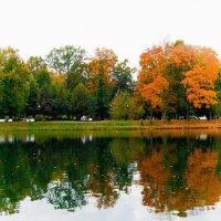 Тоскливая осень :: Ирина Ивлева