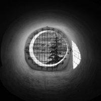 Вид с колокольни Спасского собора :: Анастасия Махова