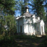 Скит в лесу. :: Ирина Михайловна