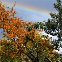 осенняя радуга :: ЮРИЙ КУЛАГИН