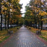 Осень , бульвар Шевченко :: Светлана З