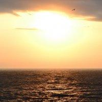 Утро на море :: Андрей Кириченко