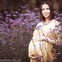 Прекрасная беременност :: Ольга Никонорова