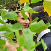 Свадьба :: Андрей Антаков