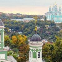 Вид с башни Веселуха. :: Игорь