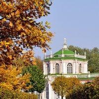 Золотая осень в Кусково. :: Надежда Лаптева