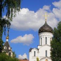 Святоелизаветинский монастырь :: Владислав Писаревский