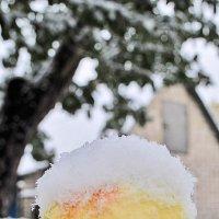 Снегом всё вокруг запорошило :: Юлия Коноваленко (Останина)