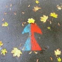 Мамзель Осень, гор. и хол. :: Ирина Сивовол
