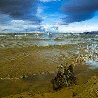 А ветер с юга гнал прибой на север... :: Вадим Лячиков