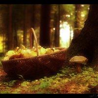 Корзинка с грибами. (1) :: Елена Kазак